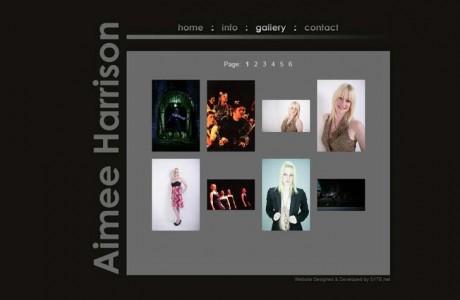 Portfolio of Graphic Design Work & Website Developments « S1TE.net