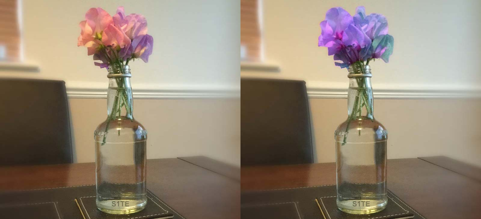 S1TE.net / Tutorials / Sweet Peas Glass Bottle Table Decoration Vase